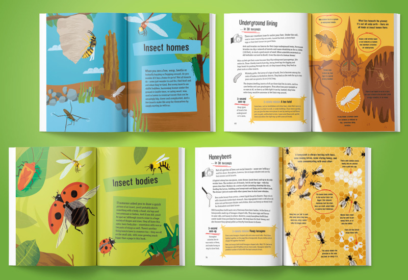childrens book design emily portnoi
